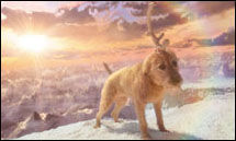 as this of the Grinch's dog Max. The background is completely digital ...