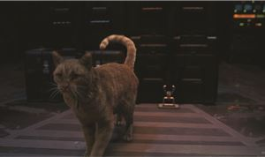 Trixter Delivers Purr-fect VFX for 'Captain Marvel'