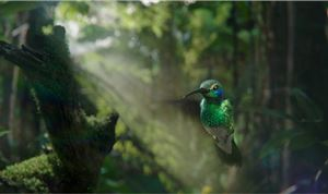 Framestore Re-creates Nature