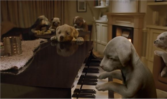 Framestore Directs and Crafts VFX for Andrex's Second CG Puppy Commercial
