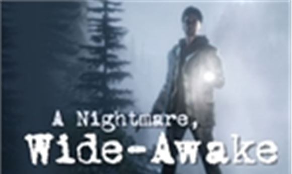 A Nightmare, Wide-Awake