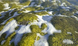 Allegorithmic Introduces Signature Series For Substance Users